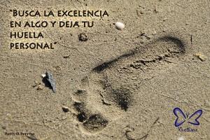 Busca la excelencia en algo y deja tu huella personal. vivessana